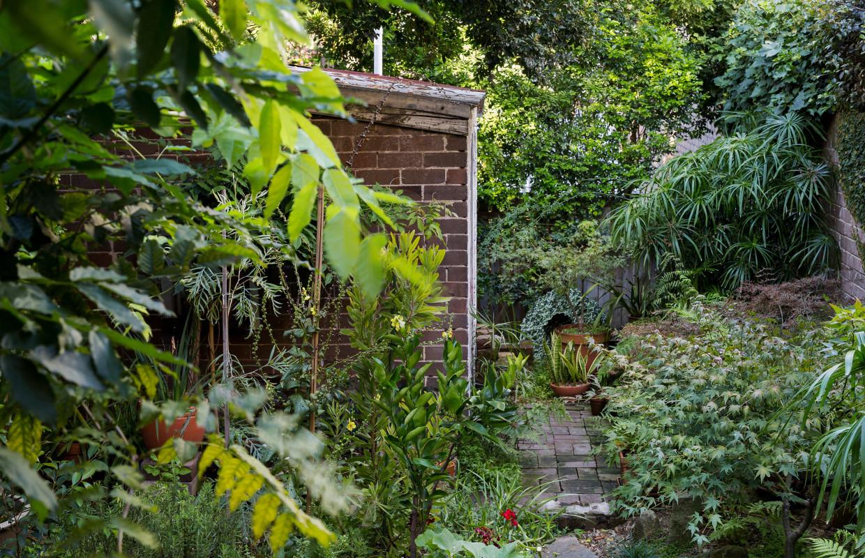 悉尼住宅园林