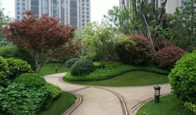 景观中的园路设计_9