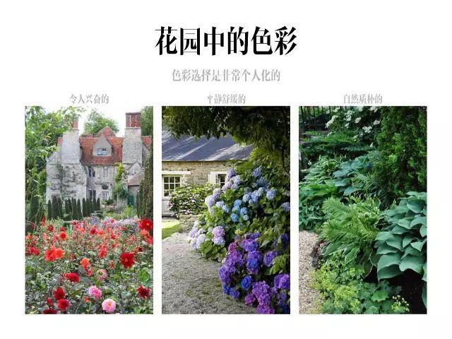 干货|庭院花园中的色彩搭配_2