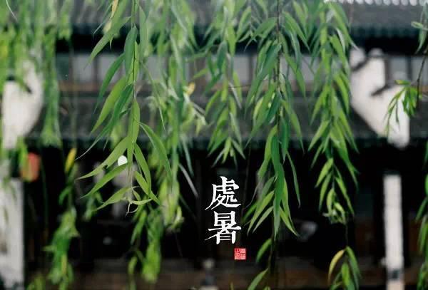 干货·园林植物全年养护管理方案,必看篇!_16