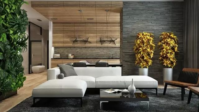 客厅装修必看,最新款客厅背景墙装修图片大全鉴赏_12