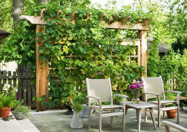 up户外休闲桌椅组合资料下载-一楼带院子,究竟该怎么设计?