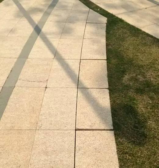 景观中的园路设计_4