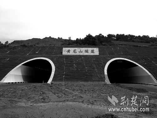 分离式双洞隧道施工方案