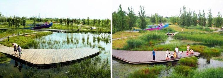 案例 渭柳湿地公园_14