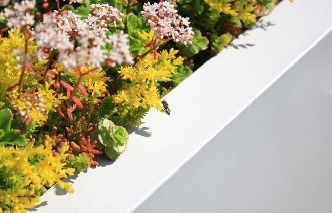 屋顶绿化创新测试(GRIT)实验室--2013ASLA研究类杰出奖