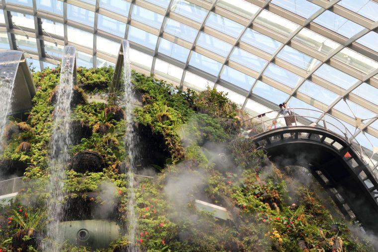 新加坡世界级超级温室花园-10