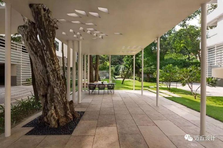 2019WLA世界建筑景观奖揭晓|生态创新_102