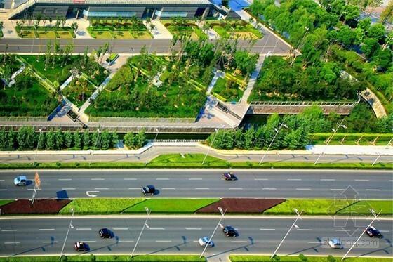 [山东]城市支路市政及景观绿化工程预算书(含全套图纸)