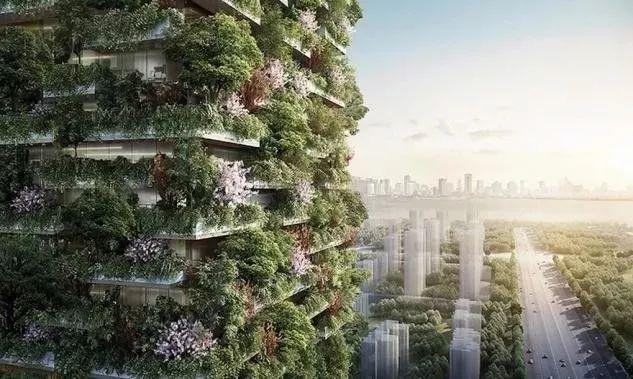 今年,在南京,这座建筑将变成森林_7