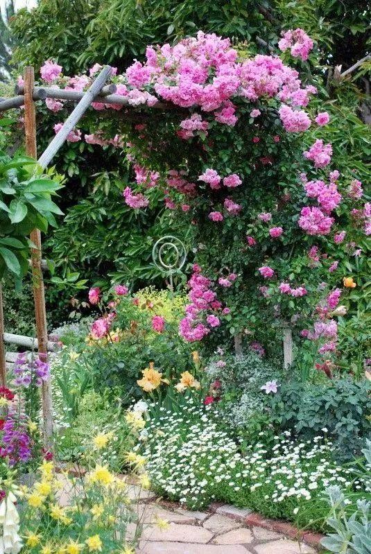 网红庭院,原来都流行这样设计!_7