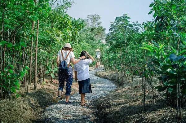 泰国在遭受打击时,景观设计做了什么?_10