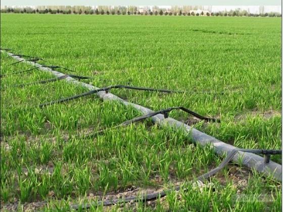[新疆]20866亩机井加压滴灌节水建设项目实施方案