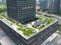 [深圳]超高层综合办公大楼施工质量情况创优汇报(国家优质工程 附图较多)
