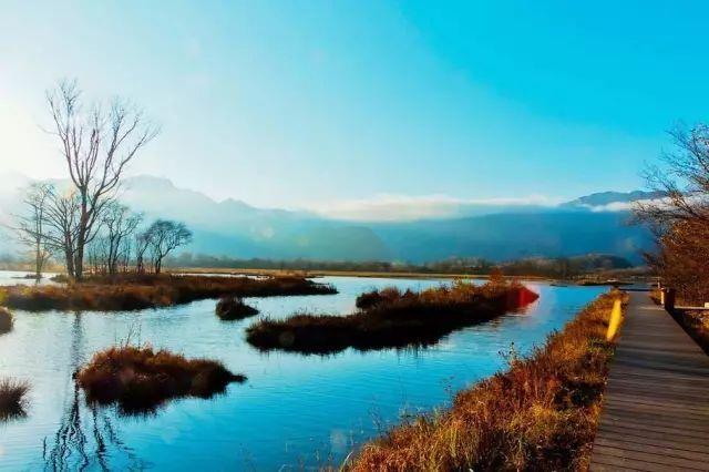 中国最美的六大湿地公园!