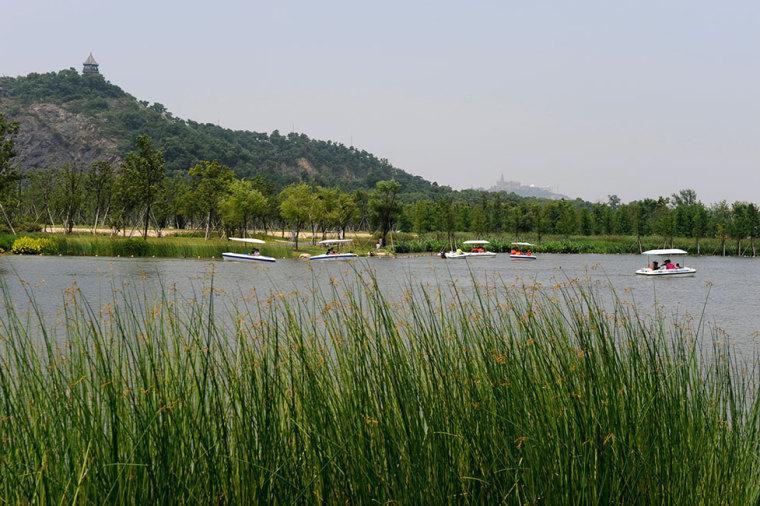 上海辰山植物园-14