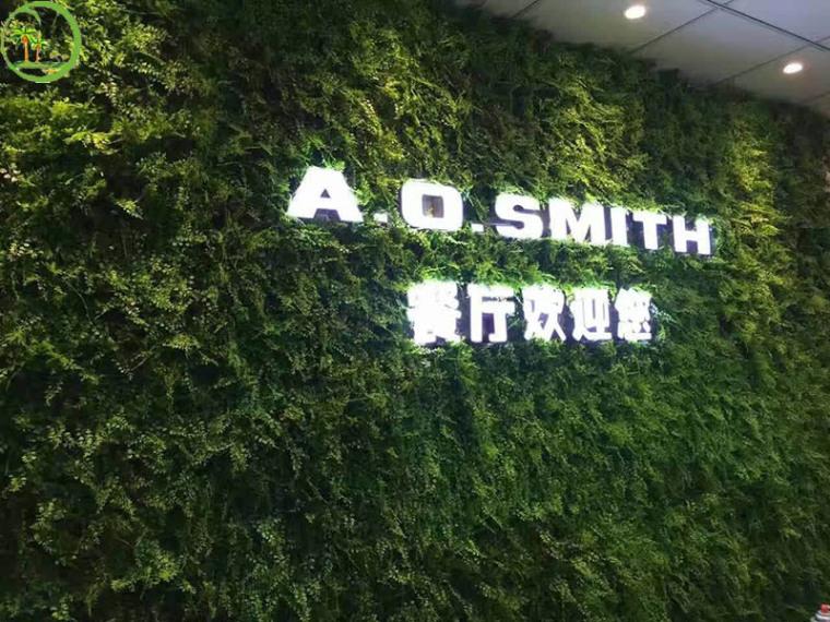 绿色环境从仿真植物墙做起