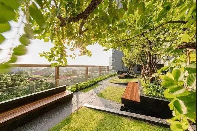 如果没有悠然小院,就给我一个空中花园