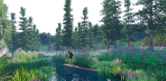 [湖北]留白简约滨水田园景观整治及生态农田修复工程设计方案(2017最新)-生态水杉林景观效果图