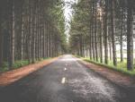 【道路工程】农村扶贫公路安全监理月报(共7页)