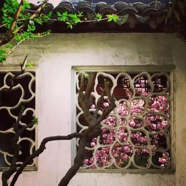 有一种建筑,叫中国古园林建筑系列之苏派园林建筑_8