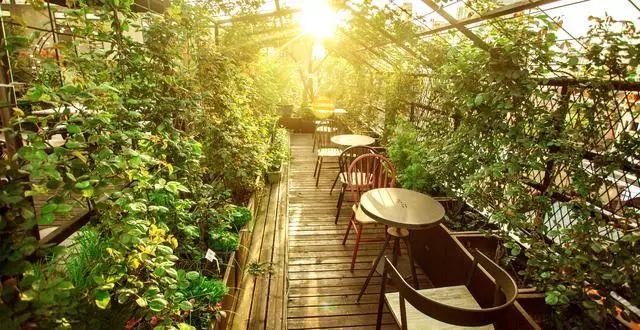 他在魔都上空建了一座梦幻花园,一年竟有几万人来打卡