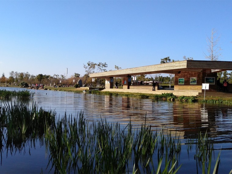 昆明斗南湿地公园