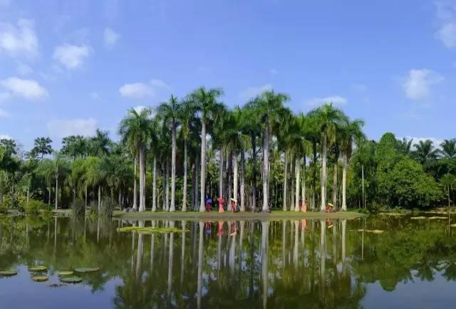中国最棒的42个植物园,你去过几个?