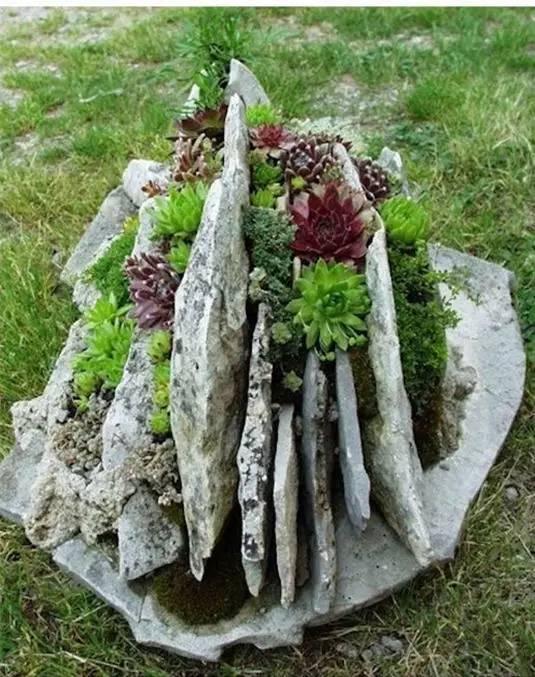 21种方法种花,比在花盆里美十倍!_16