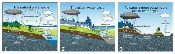 不仅是下水道——谈谈欧美景观设计中对雨水的处理