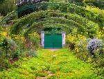 草本花卉在园林绿化与城市景观建设中的作用