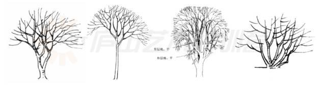 景观手绘基本技法,超实用!_1