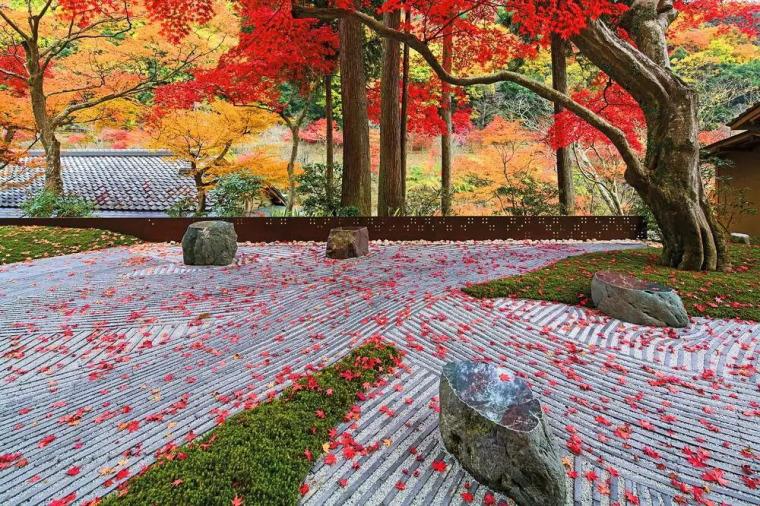 日本园林精华,只可意会!