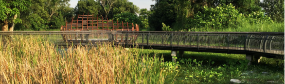案例分享|新加坡双溪布洛湿地公园景观设计_16