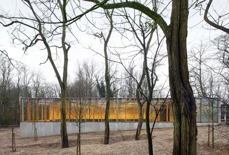 树林中的KAU体育馆