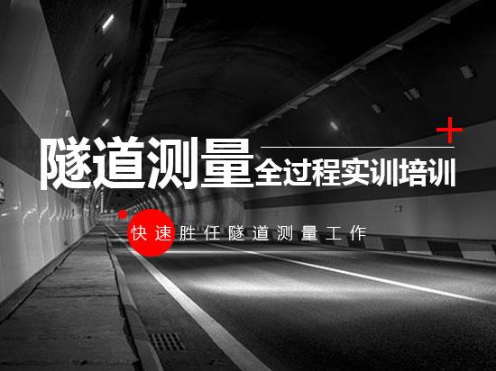 隧道测量全过程实训培训(快速胜任隧道测量工作)