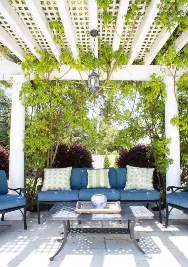 做自己庭院的设计师,造园或许没有想象的那么难!_11