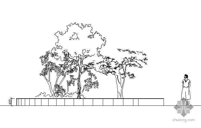 椭圆形树池施工大样图