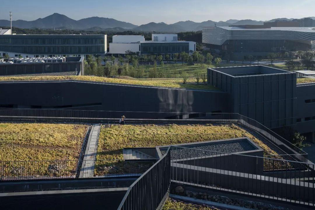 "gad作品|一场有关""场所""的建筑探索——浙江音乐学院音乐系群_10"