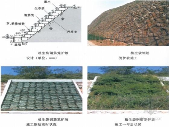 水土保持方案植被措施设计(2013年)