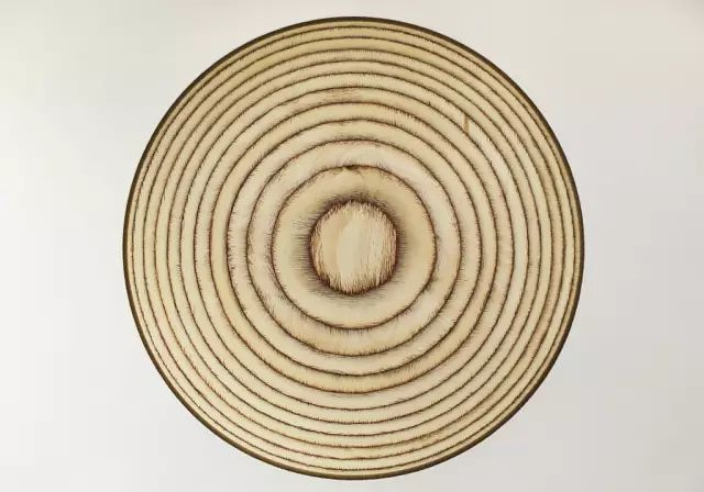 古典园林常用木材解析_8