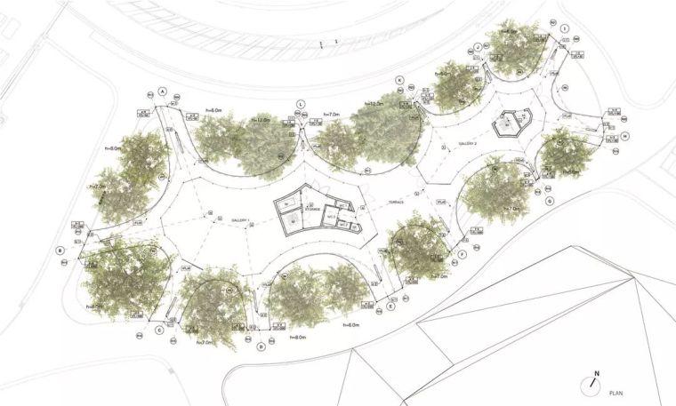 当房子遇上树,这群设计师要上天_22