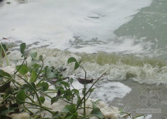 水污染与防治(PPT)