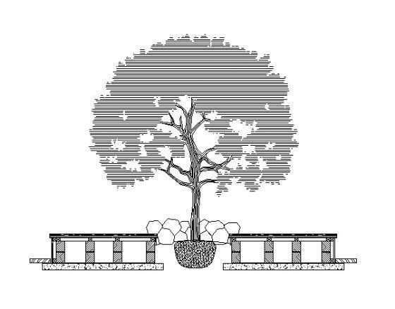 树穴详图2
