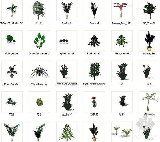 SKETCHUP植物组件