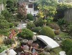 【案例赏析】带有日本园林味道的荷兰花园