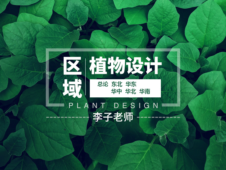 区域植物设计