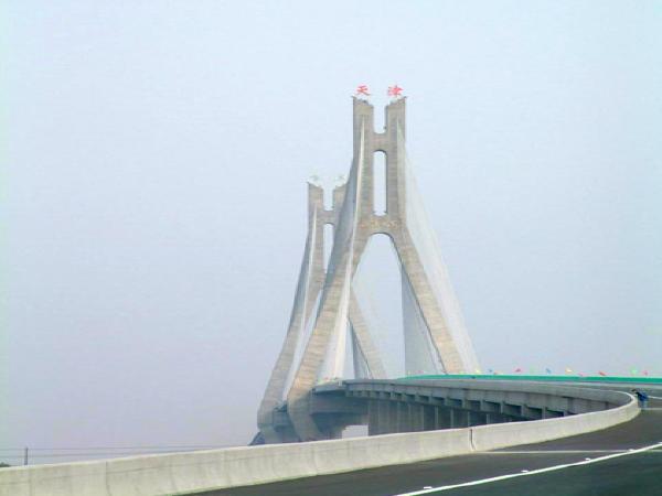 大型斜拉桥桥塔钢筋混凝土保护
