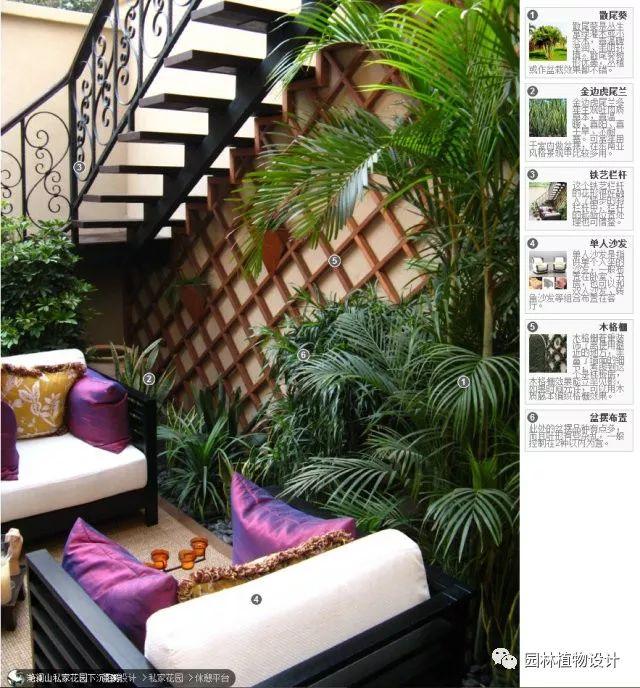 104组精彩植物配置案例(实景效果+植物品种)_44