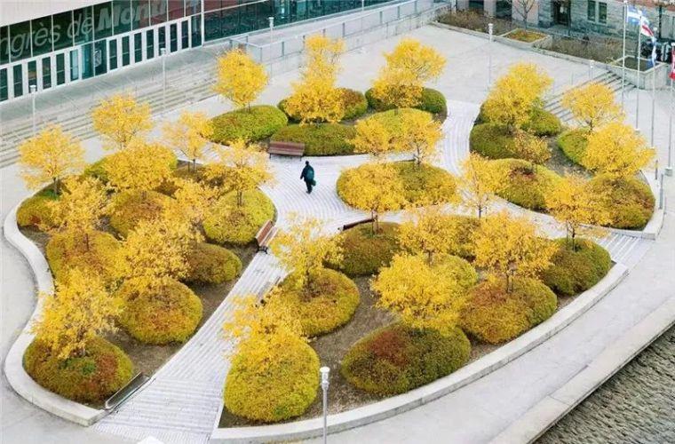花式种植池·超具设计感_40